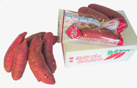 アグリ中九州商品 さつまいも(紅はるか)3kg レンジ調理袋付き