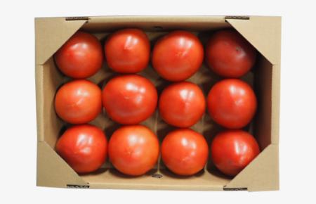アグリ中九州で栽培した「プレミアムげんきトマト(りんか409)2kg」